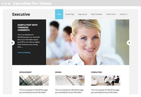 Meij website ontwerpen in Delft Executive Pro Theme
