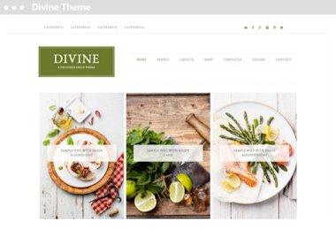 Meij website ontwerper in Delft Executive Pro Theme