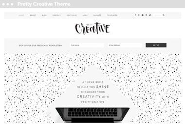 webwinkel laten maken Delft met thema voor wordpress: pretty creative pro